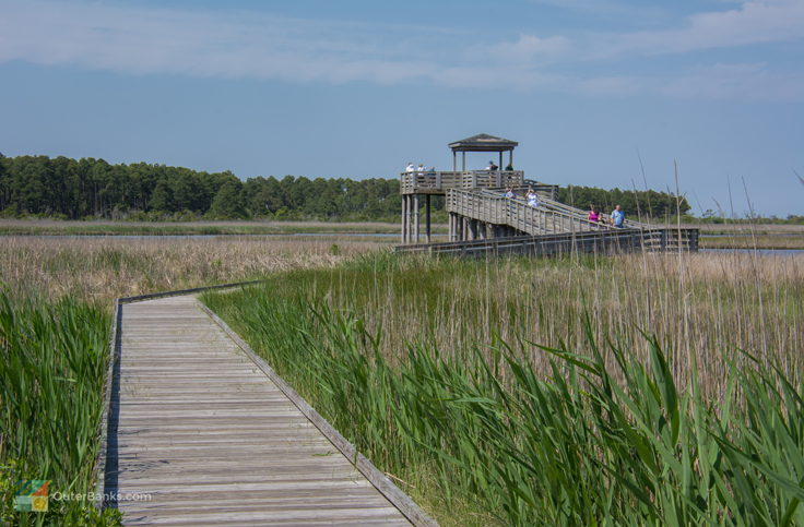 Marsh walk at Bodie Island Lighthouse