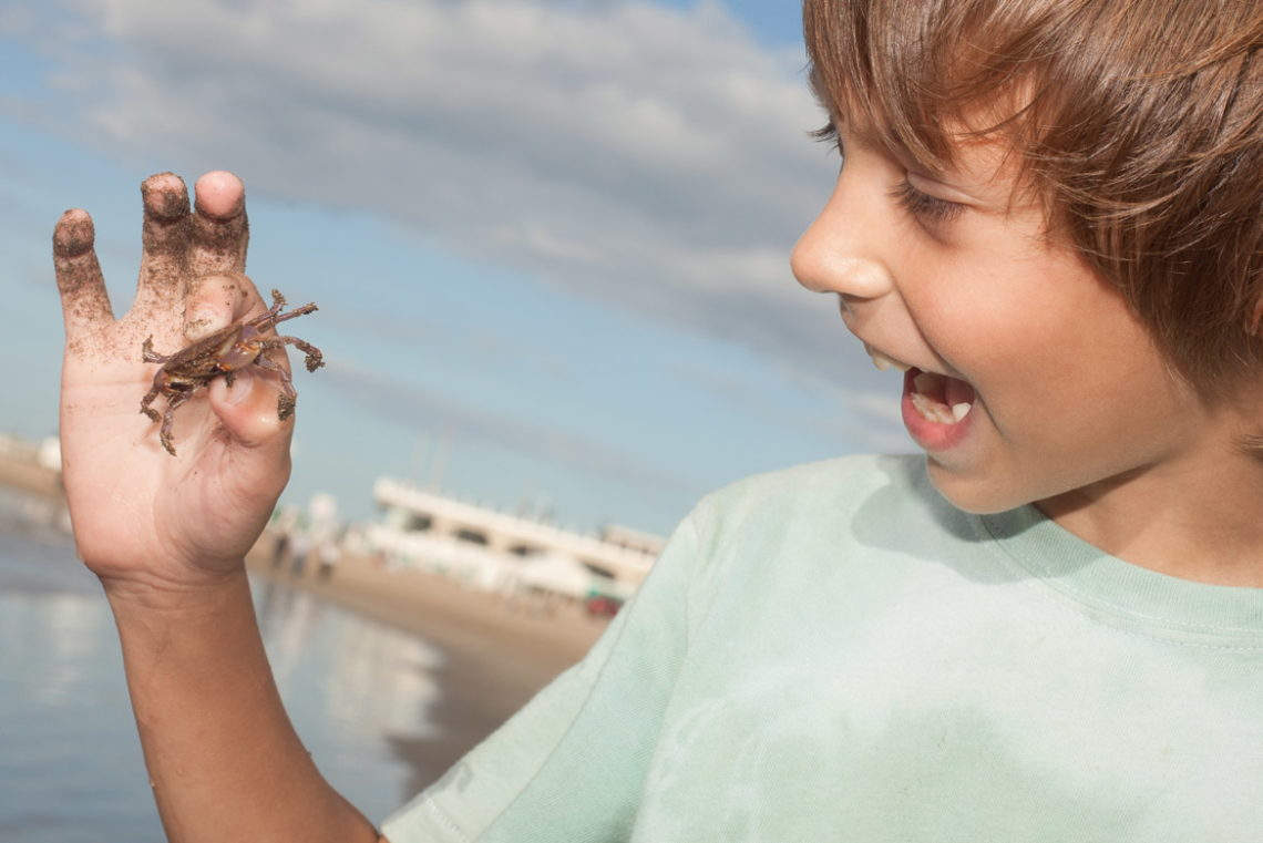 Activities for Kids - Hatteras-NC.com